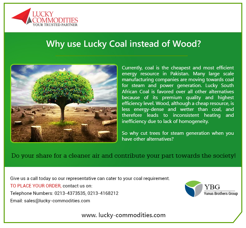 Lucky Coal vs Wood
